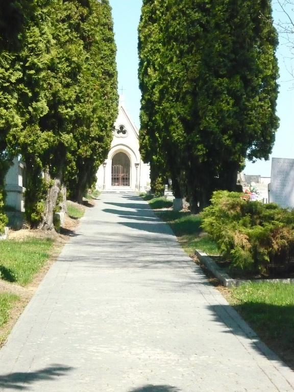 Cintorín Matejovce foto